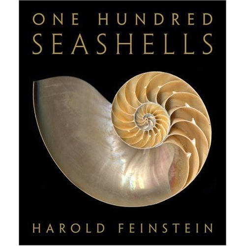 One Hundred Seashells (Hardcover)